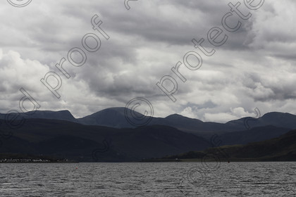 LS001064 