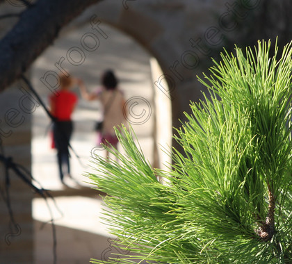 Lisbon2012-003 