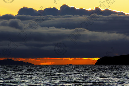 LS002742 